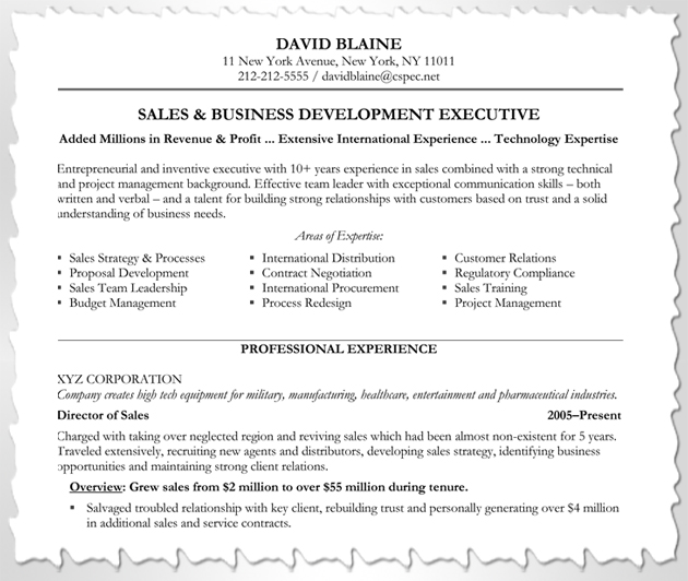 how to customize your resume blue sky resumes blog - Expert Resume Samples