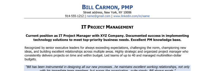 The Resume Headline  Resume Project Manager
