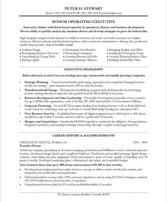 Nice Free Sample Ceo Resumes