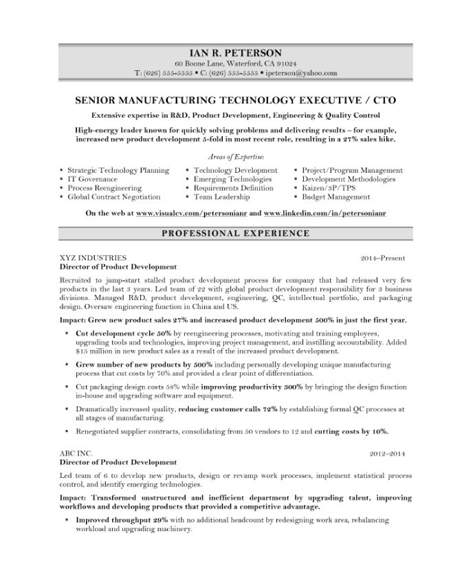 chief technology officer free resume samples blue sky resumes