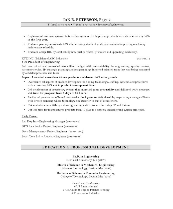 chief technology officer free resume sles blue sky